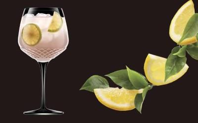 ROMA 1960: Estilo único para los Gin Tonic más premium